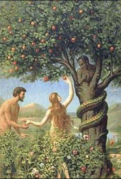 jó és gonosz fa