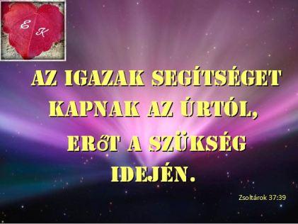 ige113