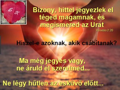 ige28
