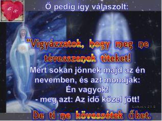 IGE166